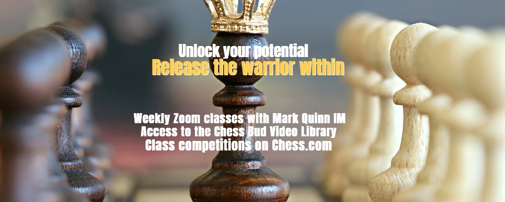 Website Banner Chess Bud Offering (9)